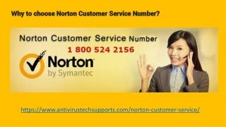 Norton Support Provides