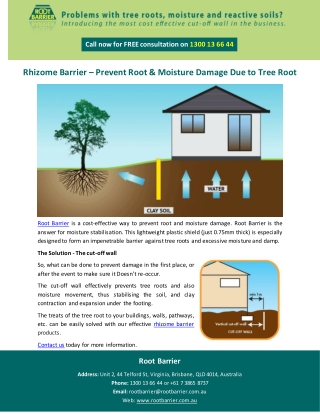 Rhizome Barrier – Prevent Root & Moisture Damage Due to Tree Root