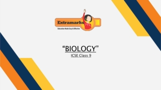 Sample Papers for ICSE Students