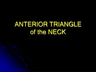 ANTERIOR TRIANGLE of the NECK