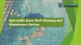 Affordable Green Pool Cleaning and Maintenance Services in Australia