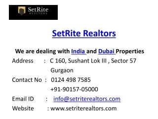SetRite Realtors