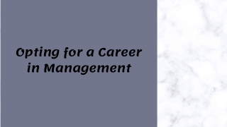 Opting for a Career in Management
