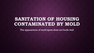 Quality Mold Remediation Companies Falls Church VA