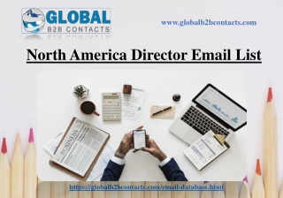 North America Director Email List