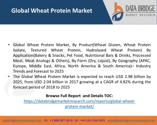 Global Wheat Protein Market– Industry Trends and Forecast to 2025