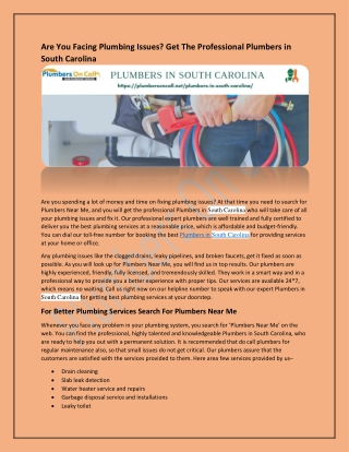 Are You Facing Plumbing Issues? Get The Professional Plumbers in South Carolina