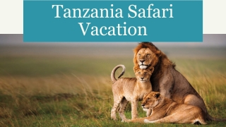Visit to Ngorongoro Crater Safari with Tanzania Safari Vacation