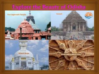 Travel Agency in Bhubaneswar - Sai Tour Travels