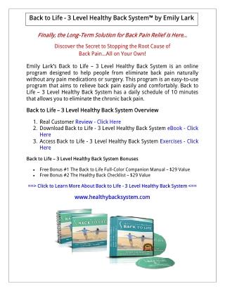 Back to Life: 3 Level Healthy Back System PDF Download