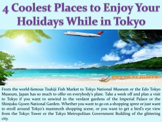 4 Coolest Places to Enjoy Your Holidays While in Tokyo