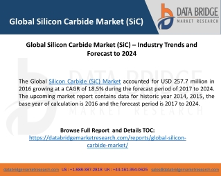 Global Silicon Carbide Market (SiC) – Industry Trends and Forecast to 2024