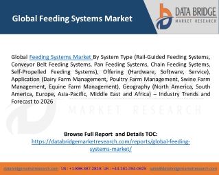 Global Feeding Systems Market – Industry Trends and Forecast to 2026