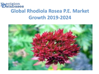 Global Rhodiola Rosea P.E. Market anticipates growth by 2024