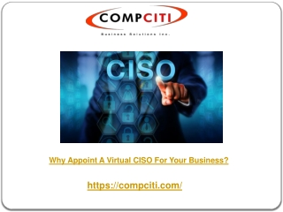 Why Appoint A Virtual CISO For Your Business