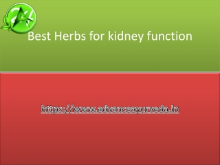 Best herbs for Kidney function