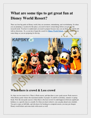 What are some tips to get great fun at Disney World Resort?