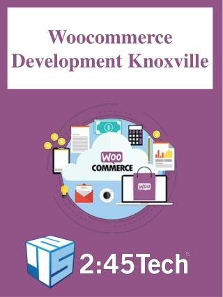 Woocommerce Development Knoxville