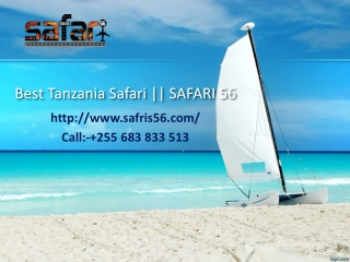 Best Tanzania Safari || SAFARI 56