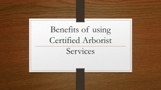 Benefits of Using Certified Aborist Services