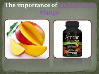 Pure African Mango