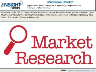 Mushroom Market Insight 2019: Industry Overview, Competitive Players & Forecast 2027