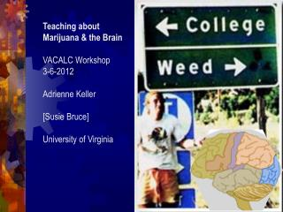 Teaching about Marijuana & the Brain VACALC Workshop 3-6-2012 Adrienne Keller [ Susie Bruce ] University  of Virgini