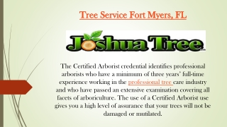 Tree Service Fort Myers, FL