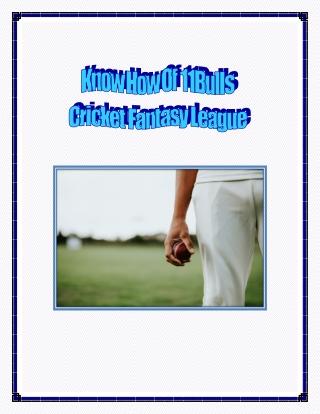 Know How Of 11Bulls Cricket Fantasy League