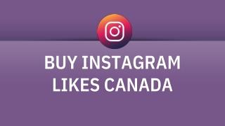 Buy Instagram Likes Canada 100% Active Likes
