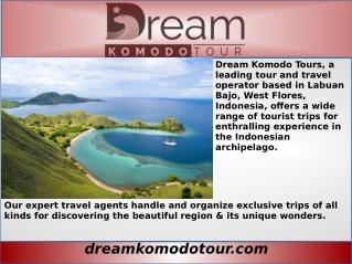 best Komodo Shore Tour