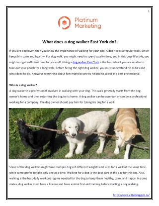 What does a dog walker East York do?