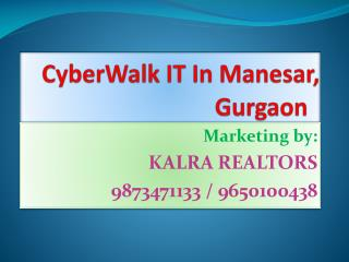 CyberWalk Gurgaon 9650100438 Project 9650100438  Manesar
