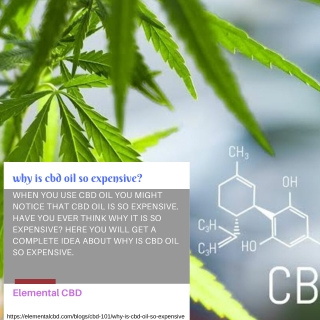 why is cbd oil so expensive | Elemental CBD