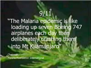 "9/11 ""The Malaria epidemic is like loading up seven Boeing 747 airplanes each day then deliberately crashing them 	int"