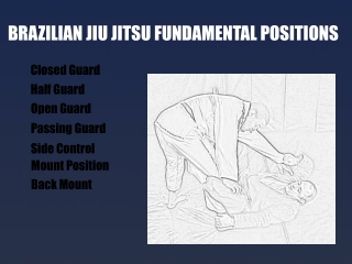 Brazilian Jiu Jitsu Fundamental Positions