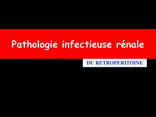 Pathologie infectieuse rénale