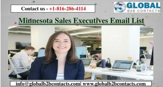 Minnesota Sales Executives Email List