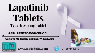 Novartis Tykerb 250mg Tablets   Indian Lapatinib supplier