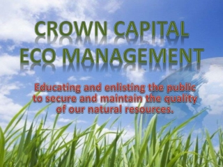 Crown Capital Eco Management - Forest and Rainforests