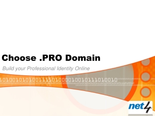 Choose .PRO Domain: Build your Professional Identity Online