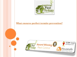 What ensures perfect termite prevention?