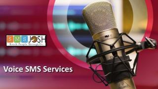 Voice SMS Services in Hyderabad, Voice SMS in Hyderabad - SMSjosh