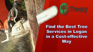 Find the Best Tree Services in Logan in a Cost-effective Way