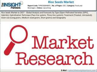 Rice Seeds Market 2019 Size, Analysis and Forecast to 2027