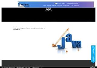 Top Java Development Services Company | Baniwal Infotech