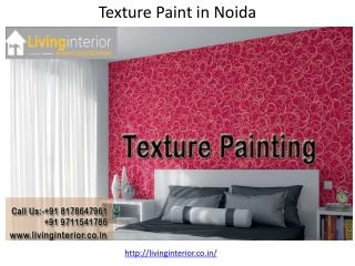Texture Paint in Noida