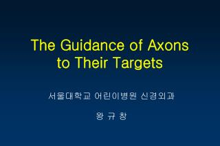 The Guidance of Axons  to Their Targets