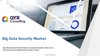 Big Data Security Market: Company Analysis, History and Future Overview