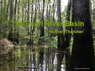 The Pearl River Basin